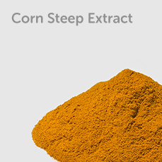 Corn Steep Extract
