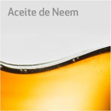 Aceite Neem