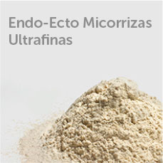 Endo Ecto Micorrizas Ultrafinas