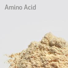 button-amino-acid