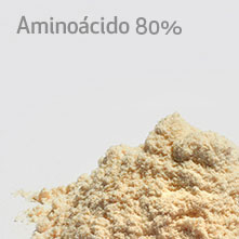button-amino-acido-2B
